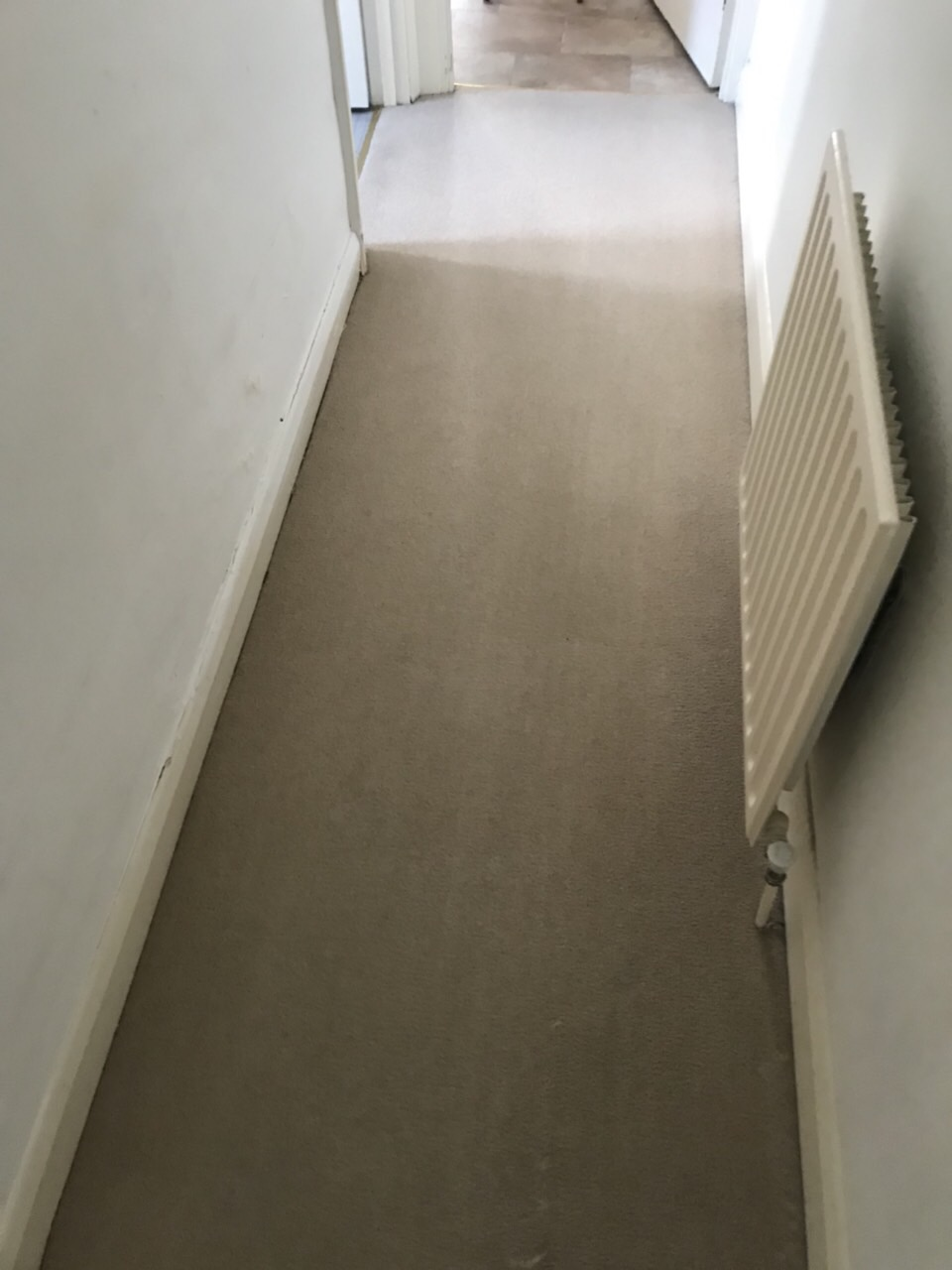 issues related with carpet